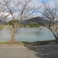 池の内池(佐賀県武雄市)
