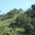 わんぱく王国・そよ風の丘高取山公園