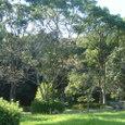 金立公園2