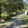 金立公園3