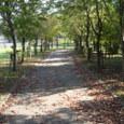 金立公園4