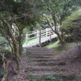 久留米森林つつじ公園2